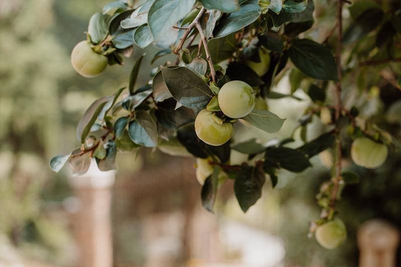 fall-wedding-verona_0050.jpg